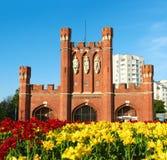Konungens port i Kaliningrad arkivfoton
