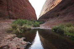 Konungs kanjon, Australien Royaltyfri Foto