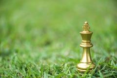 Konungschackstycken på sparat gräs royaltyfria foton