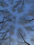 konvergerande sky till Arkivbild