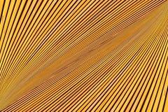 Konvergierende Linien von gelben Planken Stockfoto