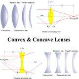 Konvexer Körper u. Konkavlinsen Stockfoto