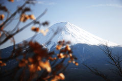 Konzentrieren Sie sich auf Punkt von Fuji-Berg in der Herbstsaison von Japan Stockfoto