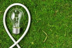 Konzeptökologie Glühlampe auf grünem natürlichem Moos mit Kopienraum lizenzfreies stockfoto