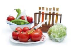 Konzept auf der genetischen Handhabung der Nahrung Stockfotos