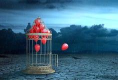 Konzept der Freiheit Luftballfliege aus dem Käfig heraus lizenzfreies stockbild