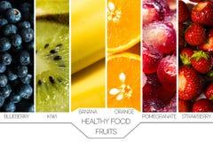 Konzept der gesunden Nahrung Saisonfrüchte stellten herein nebeneinander auf weißem Hintergrund mit Namen dar und stockbilder