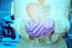 Konzept der Gesundheit und der Medizin - die Ärztin, die ein rotes Herz mit Gängen mit ecg hält, zeichnet Lizenzfreies Stockfoto