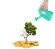 Konzept der konjunktureller Erholung Lizenzfreies Stockfoto