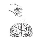 Konzept der Kreativität mit menschlichem Gehirn des Vektors Lizenzfreies Stockbild