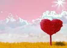 Konzept der Liebe Lizenzfreies Stockfoto