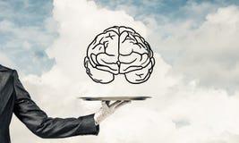 Konzept der Sinnesfähigkeitsentwicklung Lizenzfreies Stockbild