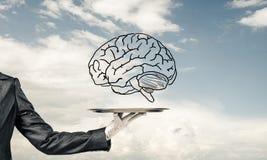 Konzept der Sinnesfähigkeitsentwicklung Lizenzfreies Stockfoto