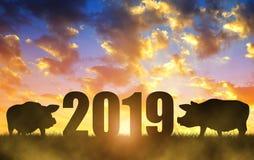 Konzept 2019 des Chinesischen Neujahrsfests stockfotos