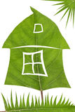 Konzept des grünen Hauses Lizenzfreie Stockfotografie