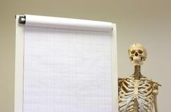 Konzept des lebenslänglichen Lernens mit dem Skelett lizenzfreie stockfotografie