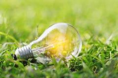 Konzept eco Glühlampe auf grünem Gras mit der Rettungsenergie der Idee ene Stockbild