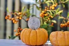 Konzept Monero Halloween lizenzfreie stockfotografie