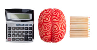 Konzept von Gehirnhemisphären zwischen Logik und Kreativität Stockfotos