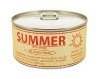Konzept von Jahreszeiten. Sommer. Blechdose. stockfotografie
