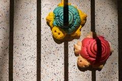 Konzept von konservieren, künstliche Schildkröten im Schattenkäfig Lizenzfreies Stockfoto