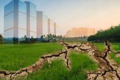 Konzepte, Dürrenbereiche vom Feld des Grüns knackten Lizenzfreie Stockfotografie