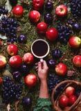 Konzepternte im September Herbstzusammensetzung mit Kaffee, Äpfel, Pflaumen, Trauben Gemütliche Stimmung, Komfort, Fallwetter Stockbilder