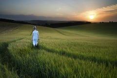 Konzeptlandschaftsjunge, der durch Feld bei Sonnenuntergang in S geht Lizenzfreies Stockbild