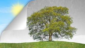 Konzeptregen gegen Sonne Lizenzfreies Stockfoto
