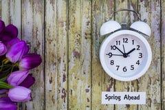 Konzeptspitze des Nutzung des Tageslichtss-Zeit-Frühlinges voran sehen unten mit weißer Uhr und purpurroten Tulpen an stockfotos
