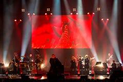 Konzert bei Harpa Lizenzfreies Stockbild