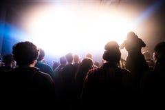 Konzert/Festival Stockfotografie