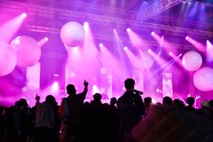 Konzertleistung Musikfestivalshow stockfotos