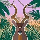 Koodoo på djungelbakgrunden vektor illustrationer