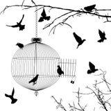 Kooi en vogelssilhouetten royalty-vrije illustratie