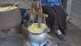 Kook shell van zijderupscocons Een belangrijk economisch dier stock videobeelden