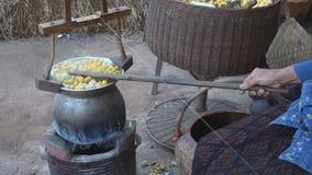Kook shell van zijderupscocons Een belangrijk economisch dier stock footage