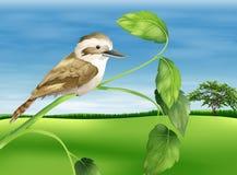 Kookaburra stock illustratie