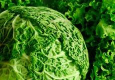 Kool en salade Stock Fotografie
