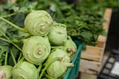 Kool groen blad in bossen, de wintergroente, op verkoop bij de markt van lokale famer, typisch van Toscanië royalty-vrije stock foto's