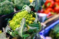Kool groen blad in bossen, de wintergroente, op verkoop bij de markt van lokale famer, typisch van Toscanië stock foto's