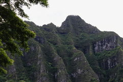 Koolau Cliffs, Oahu, Hawaii. Close up image of the Koolau Cliffs, Oahu, Hawaii Royalty Free Stock Image