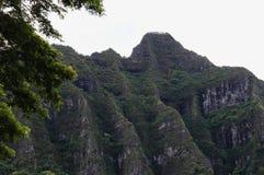 Koolau klippor, Oahu, Hawaii Royaltyfri Bild