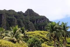 Koolau klippor, Oahu, Hawaii Arkivfoton