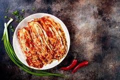 Koolkimchi Koreaanse traditionele keuken Vergist voedsel De ruimte van het exemplaar stock foto's