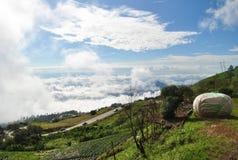 Koolstandbeeld en Weg op de ton berk Thailand van Bergphu royalty-vrije stock foto's
