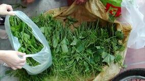 Koop groenten bij de markt stock footage