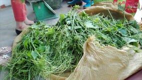Koop groenten bij de markt stock videobeelden