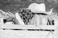 Koop verse inlandse groenten Doos of mand de houten achtergrond van oogstgroenten Uitstekende kwaliteitsgroenten enkel stock fotografie
