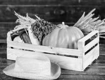 Koop verse inlandse groenten Het concept van de kruidenierswinkelwinkel Enkel van tuin De verse groenten van de leveringsdienst v royalty-vrije stock afbeeldingen